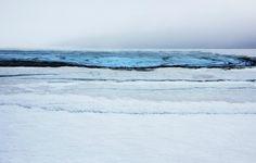 diane tuft-landscape portraits-5