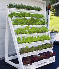 Grow greens on your patio in this movable vertical planter: Make growing and harvesting greens easy when you build this handy vertical planter for your patio.