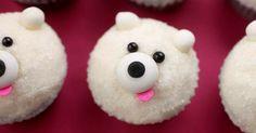 Holiday Season-dots cupcakes in Pasadena-Chocolate Polar Bear cupcakes!!!