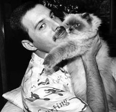 Freddie Mercury was a British singer-songwriter and producer. As the frontman of Queen, Freddie Mercury was one of the most tale.