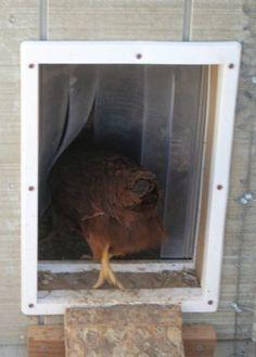 door-keeps in heat and helps with ventilation