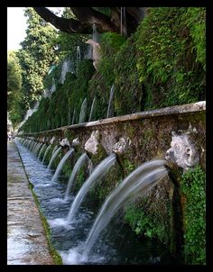The hundred fountains, Villa d'Este,Tivoli, Italy Copyright: Per Regnell