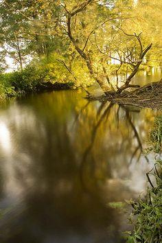 Pärnumaa 2009. Häädemeeste. Creek. Estonia ♡ #VisitEstonia #ColourfulEstonia