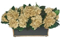 Preserved hydrangea flowers embedded in lemon leaves displayed on a long and low tole container.
