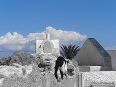 SANTORINI Greek Islands, Santorini, Mount Rushmore, Mountains, Nature, Travel, Greek Isles, Naturaleza, Viajes