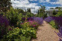Garden in La Moraleja .F . Martos by Fernando Martos Perez de Ayala, via Flickr
