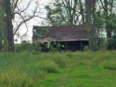 Abandoned Farmhouse o brain fl