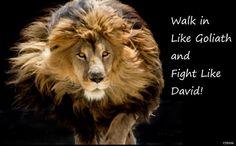 ~Strength~Through~Gods Word~