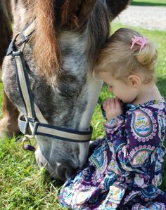 Horse leaning down to little girl