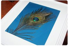 Use a piece of card stock, a peacock feather, and frame for peacock feather art. www.highheelsandahammer