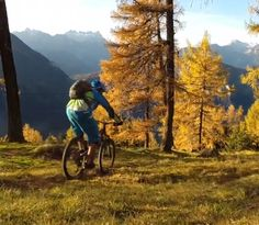 In this Trail Ninja episode, Dan Milner and Ludo May ride Verbier's flowy trails with guide Phil Warham in search of the source of Swiss chocolate.