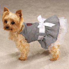 Xxsm Gingham dog dress gifts for dog lovers