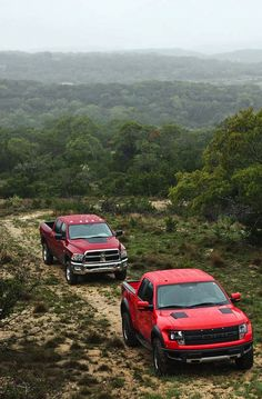 Dodge Ram Power Wagon and Ford Raptor, the only two trucks I like!