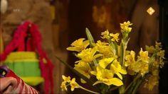 Thema: Lente. Moffel en Piertje hebben een heleboel bloemen en bollen over. Daarmee kunnen ze ook het nest van Arie mooi maken! Want op de kalender zagen ze dat het de eerste dag van de lente is!