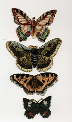 Antique Victorian Scrap Die Cut Butterflies by VintageVendor
