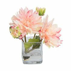 """Faux dahlia arrangement in a mouth-blown glass vase. Hand-assembled in the USA.   Product: Faux floral arrangementConstruction Material: Polyester and glassColor: Light pinkFeatures:  Includes faux dahliasMade in the USAMouth-blown vase Dimensions: 8"""" H x 6"""" W x 6"""" DCleaning and Care: Regular dusting is recommended to maintain a fresh appearance. Glass can be cleaned with warm, soapy water."""