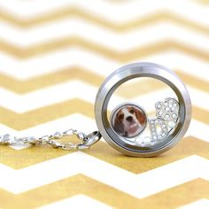 From a picture of your children to your favorite furry friend, the Do It Yourself Charm offers the ultimate in personalization. South Hill Designs, Hair Studio, Stuff To Do, Silver Rings, Charmed, Diy, Jewelry, Jewlery, Bricolage