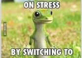 i-just-saved-100-on-stress-by-switching-to-not-giving-a-fuck