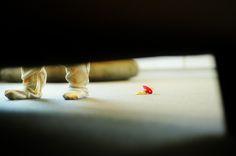 playing peek-a-boo with clover Kids Studio, Peek A Boos, Couch, Fun, Photography, Settee, Photograph, Sofa, Fotografie