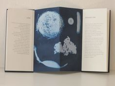 Absences (2015) Pien Rotterdam  Cyanotype on photogram and text paper handmade from kozo/cotton/hemp in different weights, apart from the cyanotype on the back, which is made from Japanese paper.  Concertina structure. Letterpress in Folio light (lead type) with silver-grey ink. 10.5 x 23 cm when closed, 42 x 23 cm open.