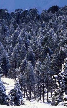 Stunning view of snowy Troodos mountains, Cyprus