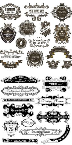 Set of vector decorative emblems and frame in vintage style for your designs…