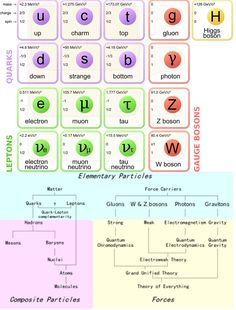The standard model of particle physics shows how the elementary particles interact via the four forces to create the physical universe. Elementary Particle, Model Show, Physics, 3 D, Infographic, Facts, Infographics, Physics Humor, Information Design