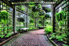 large-garden-trellis.jpg (2748×1825)