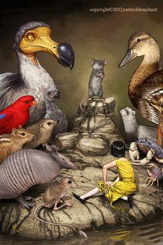 Edward Julius Detmold, Alice in Wonderland Love Illustration, Digital Illustration, Adventures In Wonderland, Alice In Wonderland, Illustrations, Whimsical Art, Animal Drawings, Creative Art, Amazing Art
