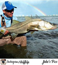 Snook Fishing on the