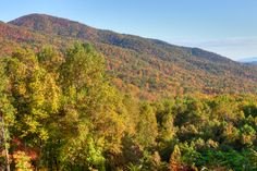We can't wait to see the leaves start changing on the Smoky Mountain trees! Smoky Mountain Outdoors, Great Smoky Mountains, Smokey Mountain, Gatlinburg Cabins, Whitewater Rafting, Blue Ridge Parkway, Historical Sites, Places To See, National Parks