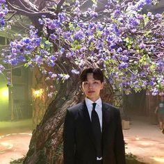 Our Ku Chang Seung had bloomed so many flowers on moon tree 🌼🌼🌼🌼 Korean Celebrities, Korean Actors, Celebs, Lee Jung Suk, Jin Goo, Yoo Seung Ho, Korean Drama Movies, Korean Dramas, Drama Korea