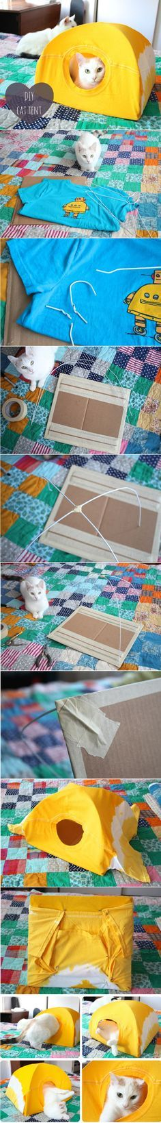 DIY Cat Tent made from your favorite old t shirt! Cats will love it as it has a cardboard bottom and it smells like you!