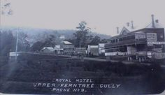 Upper Ferntree Gully. Melbourne Suburbs, Line Photo, Melbourne Victoria, Historical Pictures, Back In The Day, Ranges, Family History, Old Photos, The Past
