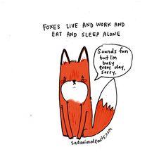 Sad Animal Facts : Photo