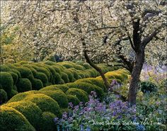 Jacques Wirtz Landscape Designer | jacques wirtz started his practice in 1950 designing and maintaining ...