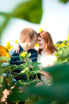 Maggie + Dave's Sunflower Engagement Session - United With Love Wedding Engagement, Engagement Session, Engagement Photos, Sunflower Field Photography, Family Portrait Poses, Sunflower Pictures, Family Photos, Couple Photos, Couple Posing