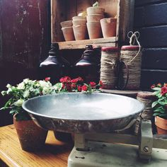 Old scales, potted roses & twine make the perfect rustic combination. #rustavalon #twine #rustichome #interiors #interiorstyle #homedecor #pottedroses #oldscales #oldbottles #interiors