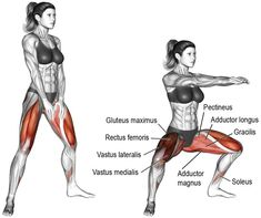 Great for beginners. Body weight sumo squat is useful for … – fitness and training Great for beginners. Body weight sumo squat is useful for … – fitness and training Squat Challenge, 30 Tage Yoga Challenge, Squat Workout, Ab Workout At Home, At Home Workouts, Squat Exercise, Workout Bodyweight, Glute Workouts, Calisthenics Workout