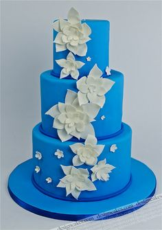 I love this one. Blue cakes are cool.