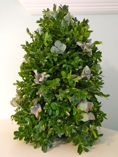 How to Make and decorate a miniature boxwood Christmas tree ...