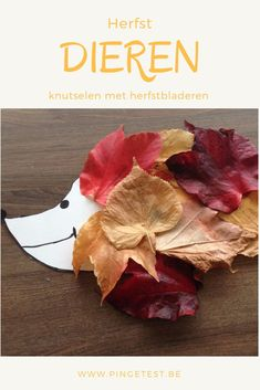 Crafts with children are especially fun in autumn. Crafts with autumn . Indoor Activities, Infant Activities, Activities For Kids, Fun Arts And Crafts, Diy And Crafts, Diy For Kids, Crafts For Kids, Autumn Animals, Preschool Christmas Crafts