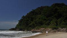 Praia da Juréia - São Sebastião - Litoral Norte