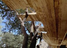 Gallery of Royal Academy for Nature Conservation / Khammash Architects - 8