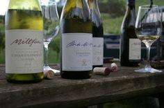 http://www.wineanorak.com/newzealand/Picture_312.jpg Milton vineyards