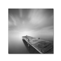 Destiny IVb by Moises Levy Photographic Print on Wrapped Canvas