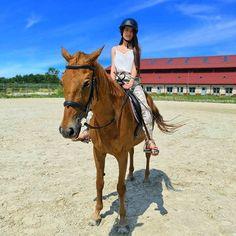 Clipuri Video, Idol, Horses, Instagram, Animals, Animales, Animaux, Horse, Animal