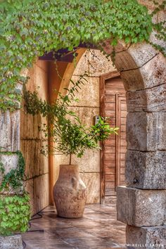 Lebanon Beirut, Lebanon Culture, Byblos Lebanon, Old House Design, Arch Gate, Beautiful Homes, Beautiful Places, Tuscan Style Homes, Stone Walkway