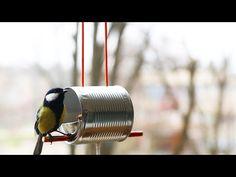 How to Make a Bird Feeder - YouTube