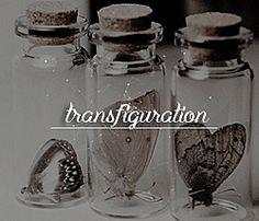 hp aesthetic → classes Hogwarts Founders, Dark Thoughts, Albus Dumbledore, Harry Potter Universal, Mason Jar Wine Glass, Ravenclaw, Bones, Oc, Army